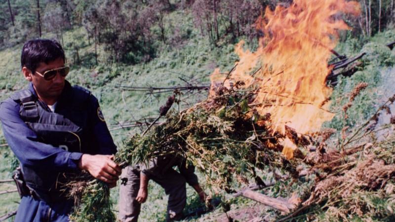 "DEA: Mexican drug lord ""not Robin Hood"""